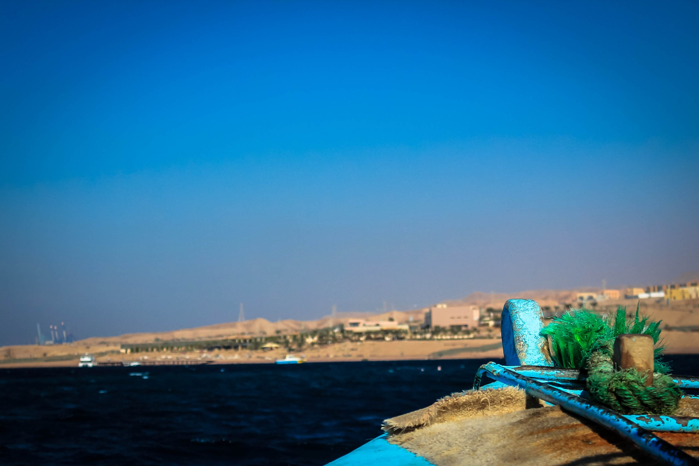 Plongée dans la Mer Rouge à Aqaba en Jordanie
