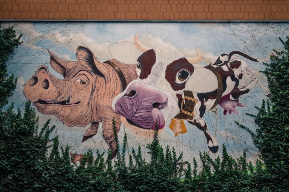 Street art à Nuremberg