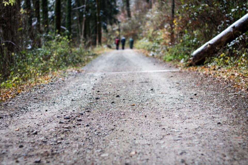 Hiking dans les Vosges